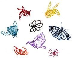we are insects. by delicje