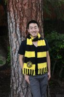 Hufflepuff Scarf by lavvy88