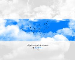 Flight into the Unknown WP by akisu-sama