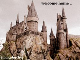 welcome home by coloradorebel