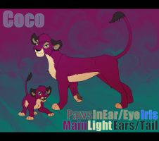 Coco Reference Sheet by AnnaGiladi