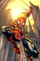 Spiderman Colors by NateJ25