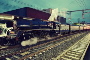 steam train ii. by stephhabes