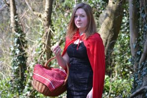 Little Red Riding Hood by Katherinelion