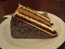 Chocolate Indulgence by belleaundrea