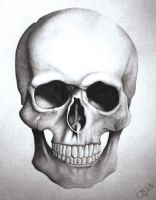 My Skull Drawing by jdiarte14