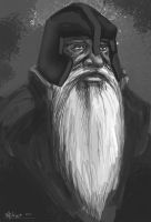 Old dwarf by Nowio