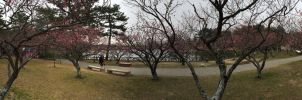 the iPhone panorama view by jyoujo