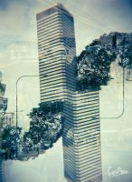 ...Twin Building... by ditya