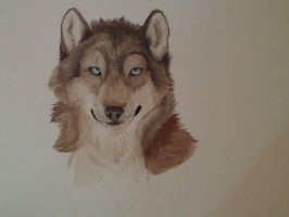 Wolf Watercolour by Taunii