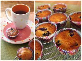 Blueberry Muffins by pandrina