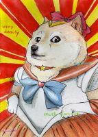Sailordoge by michaelthomasgrant