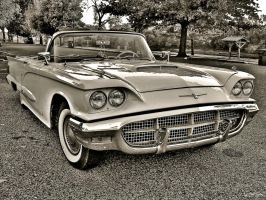 1960 Ford Thunderbird -HDR- by tripptaylor