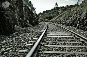 Follow the Tracks by ThatScalieThing