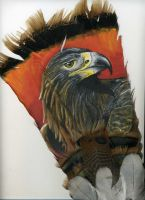 Golden Eagle on Feather by atrafeathers
