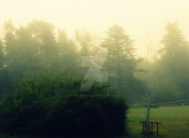 The Fog by CheiftainPhotography