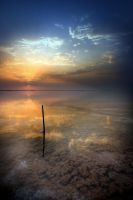 Seascape IV by R-Desert-Rose