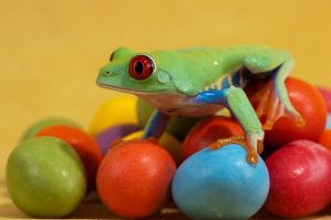 Easter frog 1 by AngiWallace