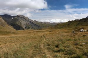 Mountain 324 - path in gold grass by Momotte2stocks