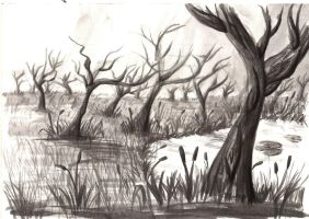 Trees by Sati-Chan-Meown