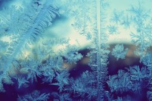 Frost by Pasywna