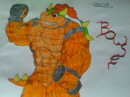 bowser by tribalwolfie