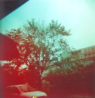 holga car by legolegere