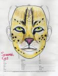 Savannah Cat makeup sketch by toberkitty