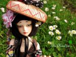 Out in Spring by BlackKissBjd