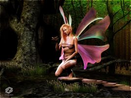 ..: Forest Faery :.. by Ascinct