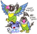 Chatot by CaptainLinebeckBlack