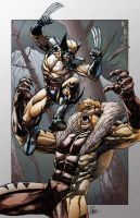 Wolverine vs Sabretooth by h4125