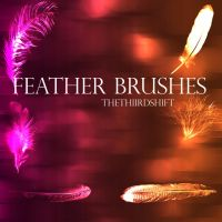 Feather Brushes by thethiirdshift