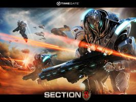 Section 8 Wallpaper 3 by alimination602
