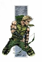 green arrow colors 2011 by barfast