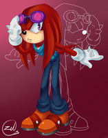 Knuckles the echidna by zeldaprincessgirl100