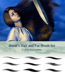 Hair and Fur Brush Set by dierat