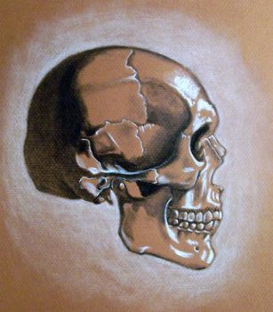 Skull-Sideview by Mittyume