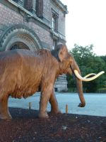 Woolly Mammoth by WorldSerpent