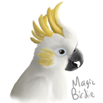 Cockatoo speedpaint by MagicBirdie