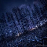 In the land of nightcrawlers by wchild