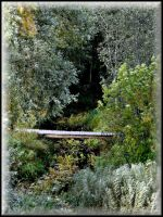 Footbridge over the River... by Yancis