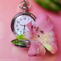 Lily and clock by FrancescaDelfino