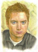 Elijah Wood. by inarion7