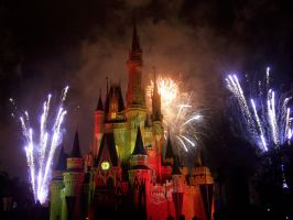Fireworks at the Magic Kingdom by sarka1
