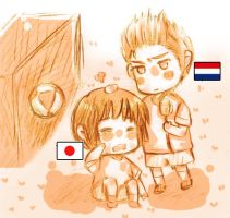 APH - WC-Netherland Japan by tukhanh93