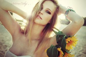 sunflower by SabrinaCichy