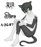 .R.I.P. Stormy by BlackDios