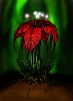 carnivorous christmas plant by 1amm1