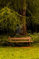 Bench by Jagman48